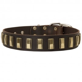 German Shepherd Collar with Brass Blocks, Leather