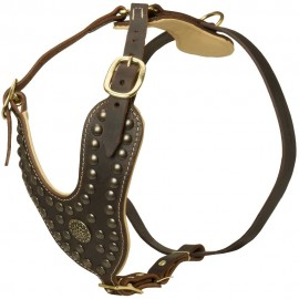 German Shepherd Harness, Nappa Padded & Studded Leather