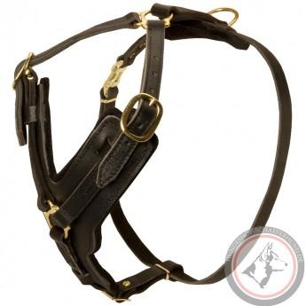 Schäferhund Brustgeschirr aus Fettleder handbearbeitet