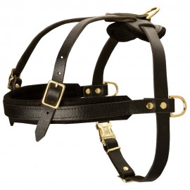 German Shepherd Harness Leather for Pulling, Tracking