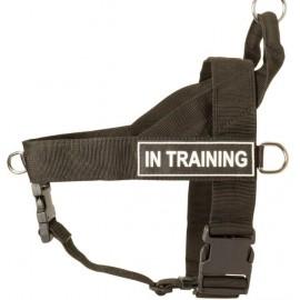 Stilvolles Hundegeschirr Nylon K9 für Labrador für Sport und Dienst