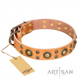 """Leder Hundehalsband """"Sophisticated Glamor"""" FDT Artisan, hell-braun"""