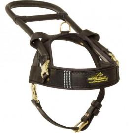Exklusives Blindenhundegeschirr Leder K9 für Labrador schwarz