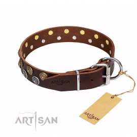 "German Shepherd Dog Collar ""Strong Shields"" FDT Artisan, Brown"