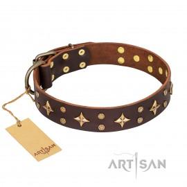 "German Shepherd Collar ""High Fashion"" FDT Artisan, Brown Leather"