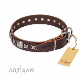 "German Shepherd Collar ""Perfect Impression"" FDT Artisan, Brown"