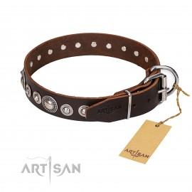 "German Shepherd Collar ""Step and Sparkle"" FDT Artisan, Brown"