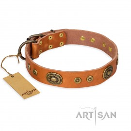 "German Shepherd Collar ""Dandy Pet"" FDT Artisan, Beige Leather"