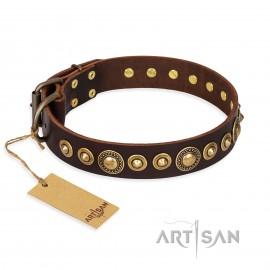 "German Shepherd Collar Artisan ""Ancient Warrior"" Brown Leather"