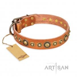 "German Shepherd Collar Tan Leather ""Feast of Luxury"" FDT Artisan"