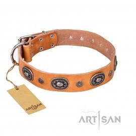 """German Shepherd Dog Collar """"Twinkle Twinke"""" FDT Artisan, Beige"""