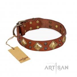 "German Shepherd Collar Brown Leather ""Golden Square"" FDT Artisan"
