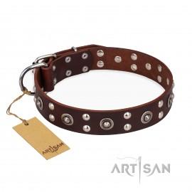 "German Shepherd Dog Collar Black, FDT Artisan ""Refined Essence"""
