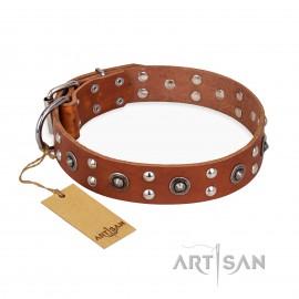 """Leder Hundehalsband für Schäferhunde """"Silver Elegance"""" FDT Artisan für stilvolle Ausflüge mit dem Hund"""