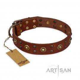 "German Shepherd Collar ""Unfailing Charm"" FDT Artisan Tan Leather"