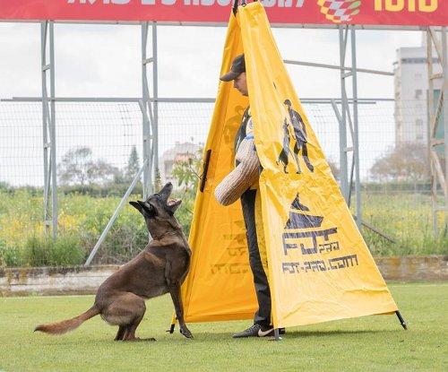 Kleidung fuer Sport mit Hunde