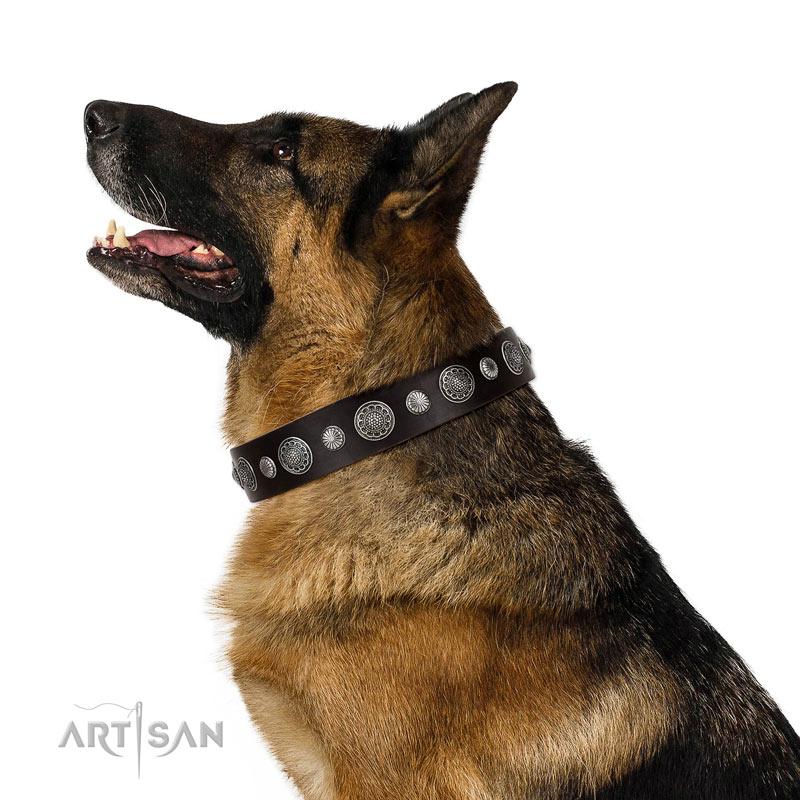 Braunes Nieten Lederhalsband für Schäferhunde