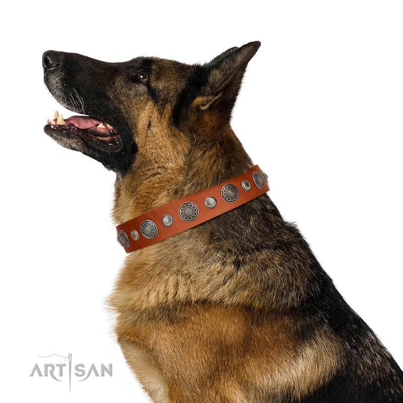 Tan Nieten Lederhalsband für Schäferhunde