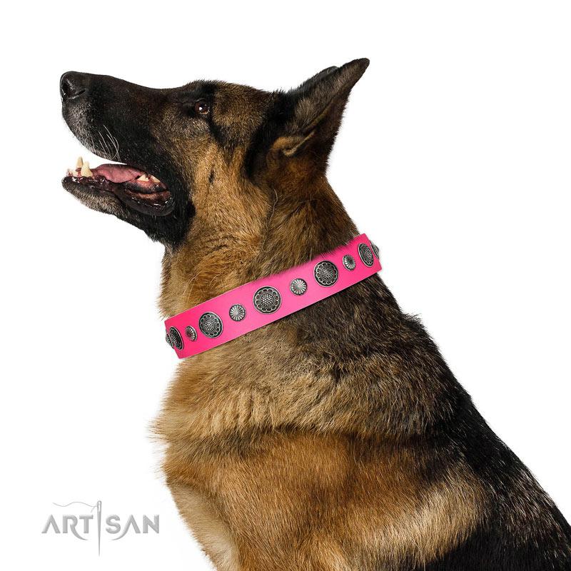 Rosa Halsband mit Nieten für Deutschen Schäferhund