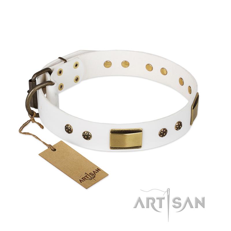 Weißes Hunde-Halsband für Deutschen Schäferhund kaufen