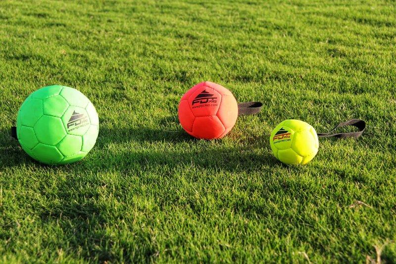 Hundeball für Fussball mit dem Hund, Schäferhund