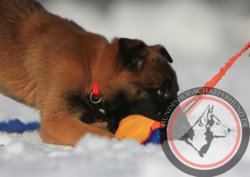 Hundespielball für Schäferhund Welpen