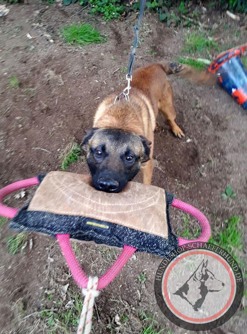 Beisskissen fuer Schaeferhund kaufen