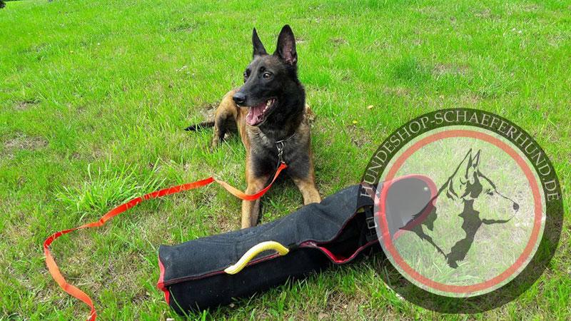 Hetzarm für Hundesport