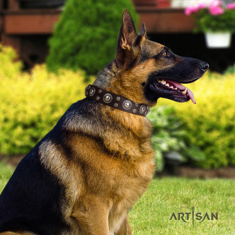 Lederhalsband für Schäferhund in schönem design