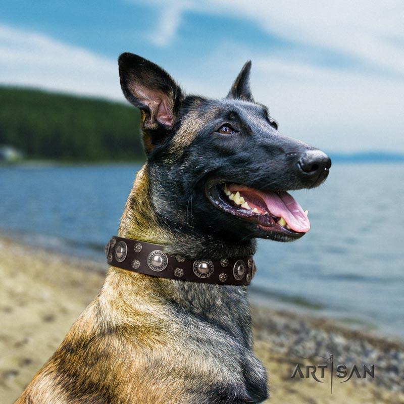 Preiswertiges Lederhalsband für Belgischen Schäferhund
