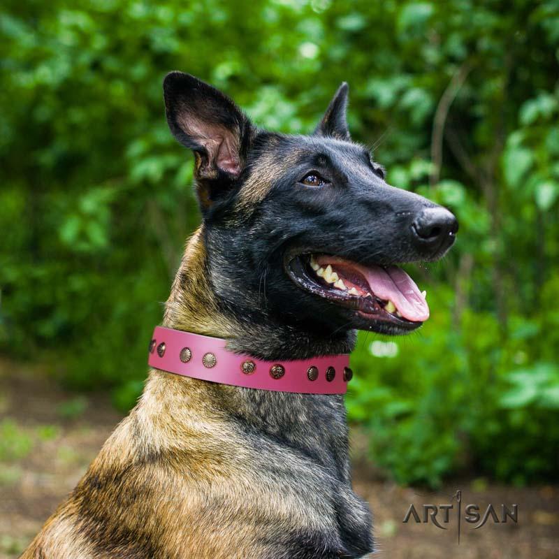 Nieten Halsband aus rosa Leder für Malinois