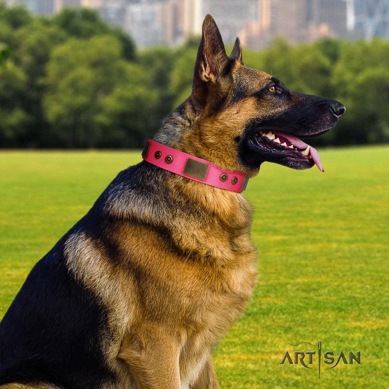 Rosa Lederhalsband mit Nieten für Schäferhunde