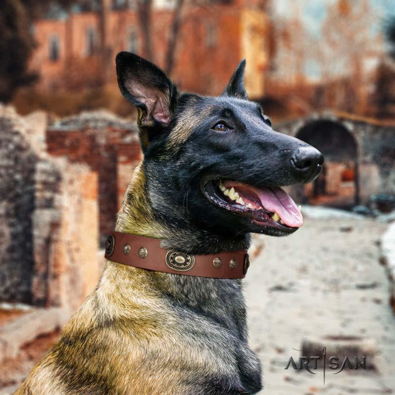 Tan Lederhalsband mit Nieten für Schäferhunde