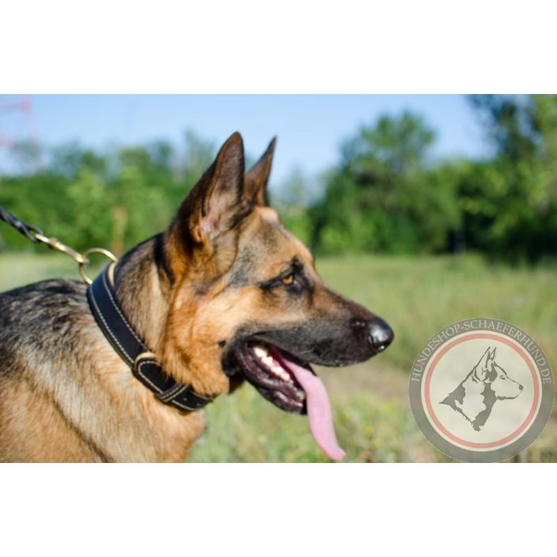 Großes Hundehalsband für Schäferhund kaufen
