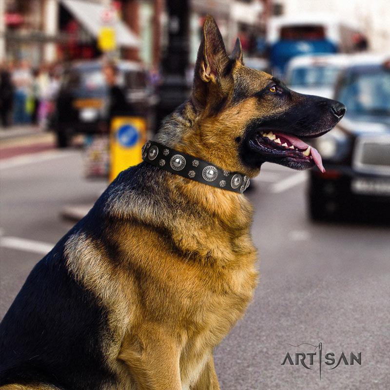 Halsband Leder für Schäferhund von FDT Artisan