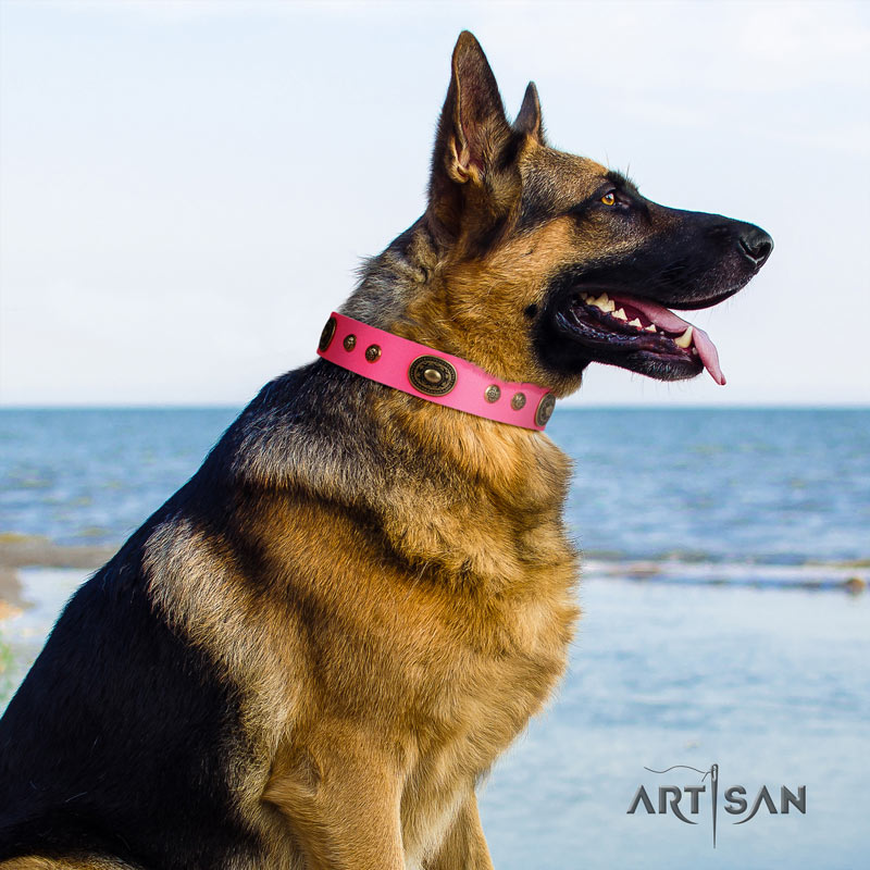 Genietetes Lederhalsband in rosa für Schäferhunde