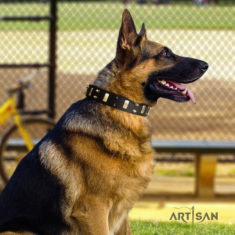 Nieten Lederhalsband in schwarz für Schäferhund von FDT Artisan