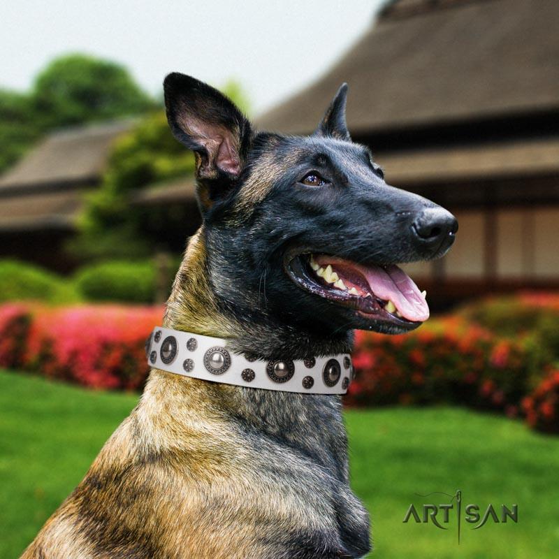 Genietetes weisses Lederhalsband für Belgischen Schäferhund