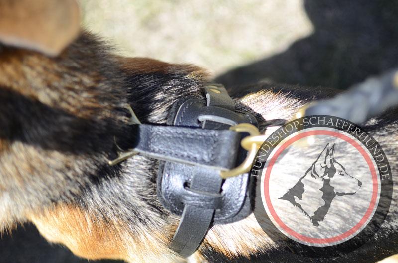 Brustgeschirr für Schäferhund