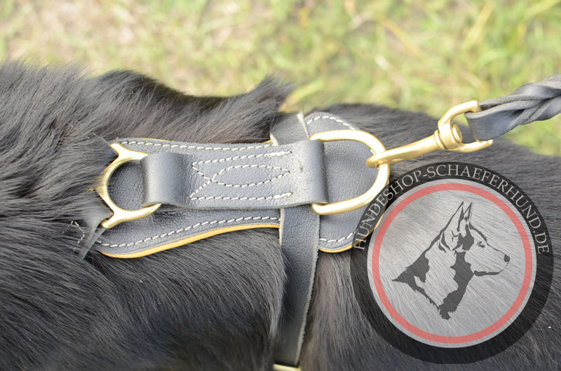 Starkes Hundegeschirr aus Leder für Schäferhund, gepolstert