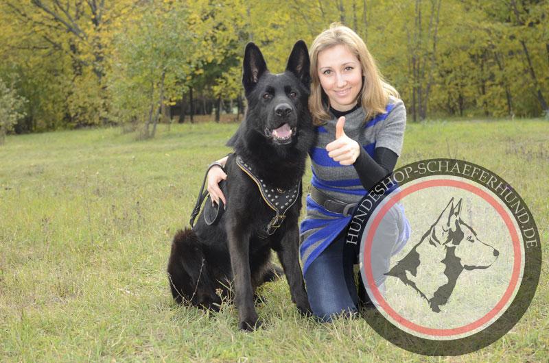 Stilles Leder Hundegeschirr für Schäferhund, gepolstert