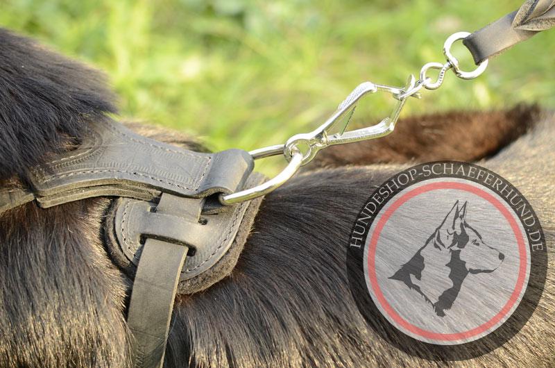 Hundegeschirr aus Leder mit verchromten Metallteilen