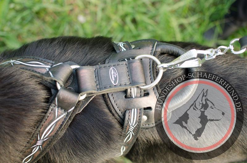 Hundegeschirr aus Leder, gepolstert