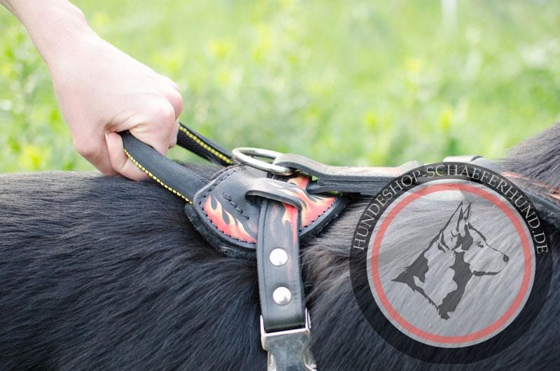 dauerhaftes Leder Hundegeschirr