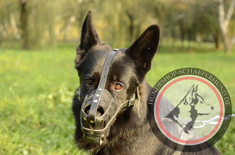 Gittermaulkorb Leder für Schäferhund