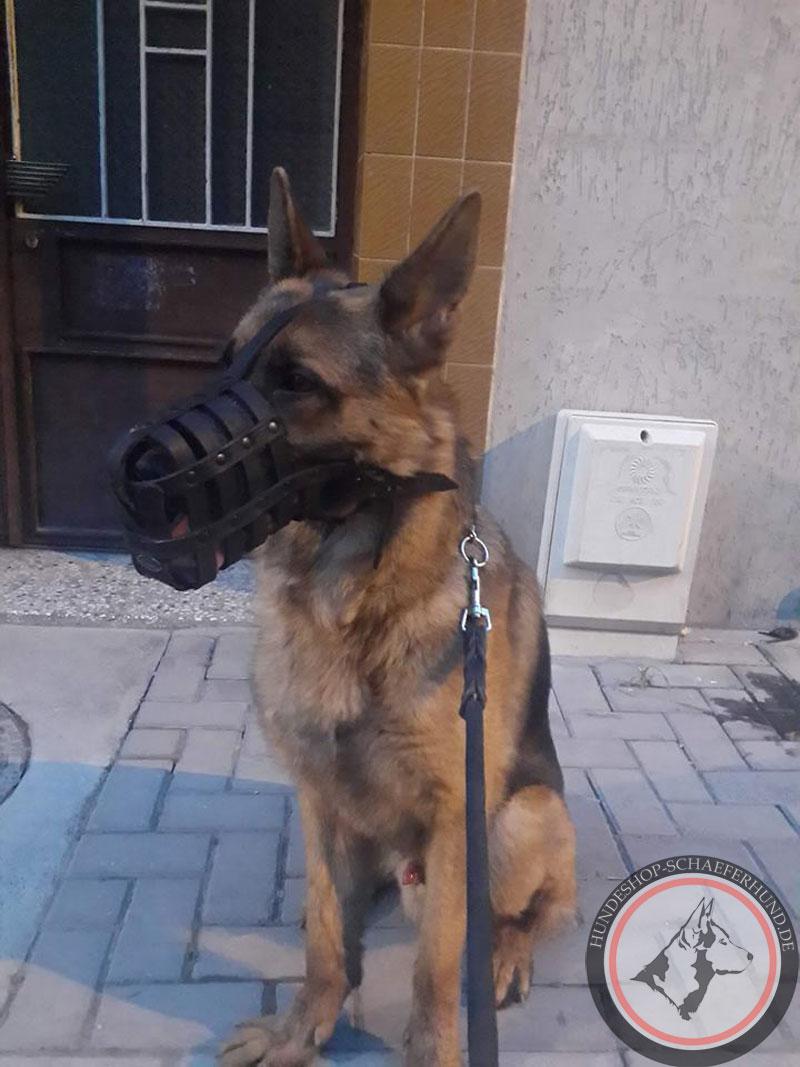 Beißkorb aus Leder für Deutschen Schäferhund