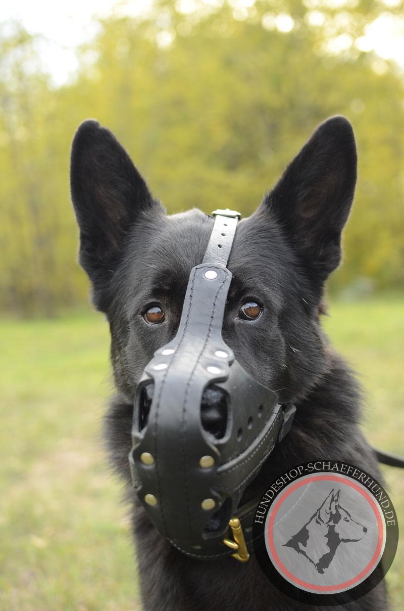 Ledermaulkorb für Schäferhund