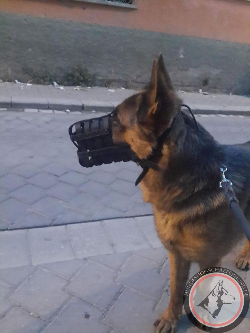 Ledermaulkorb für Deutschen Schäferhund