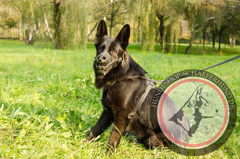 Starker Maulkorb aus Leder für Schäferhund mit Nappa-Polsterung